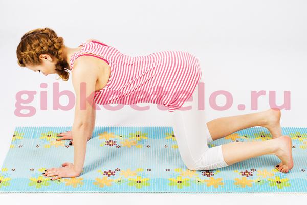 Комплекс упражнений, предназначенный для лечения и профилактики остеохондроза.